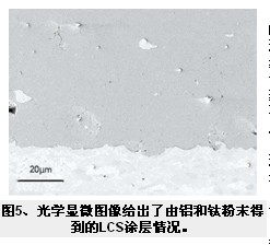 光学显微图像给出了由铝和钛粉末得