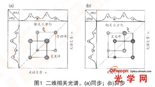 二维光谱 a)同步 b)异步