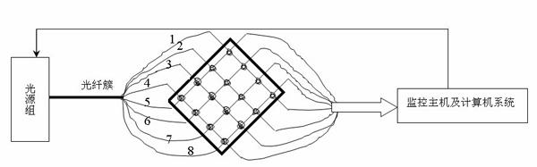 智能结构光纤埋入法示意图