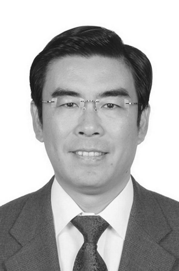 中国半导体行业协会IC设计分会常务理事长魏少军
