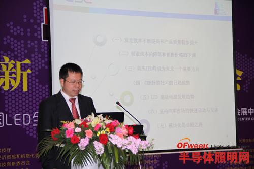 深圳市LED产业联合会常务副会长兼秘书长眭世荣在会上发言