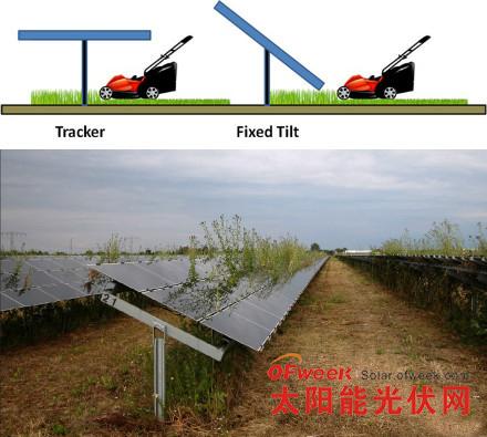 因设计不当,导致光伏电站运营后无法除草,杂草遮盖了光伏组件