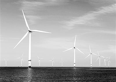 风力风电场