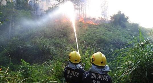 图为钦州消防官兵在扑救山林大火。