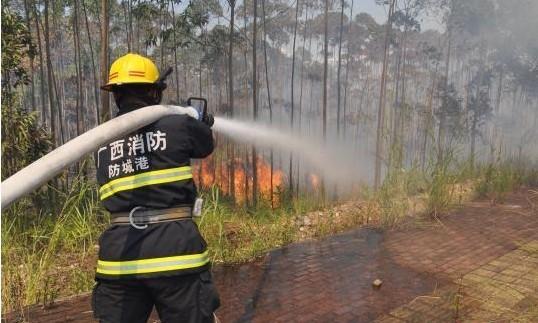 图为防城港消防官兵用水炮对起火桉树林进行扑救。