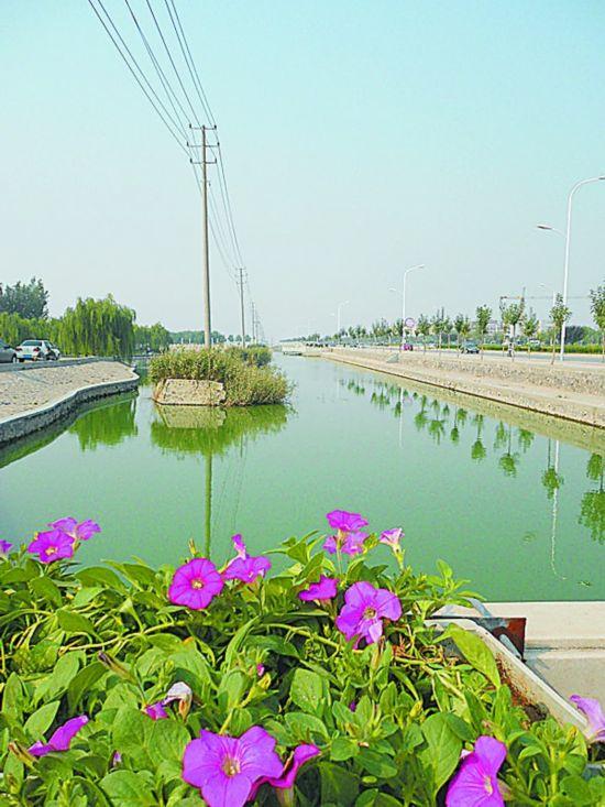 黄骅市区一景观河变臭水沟