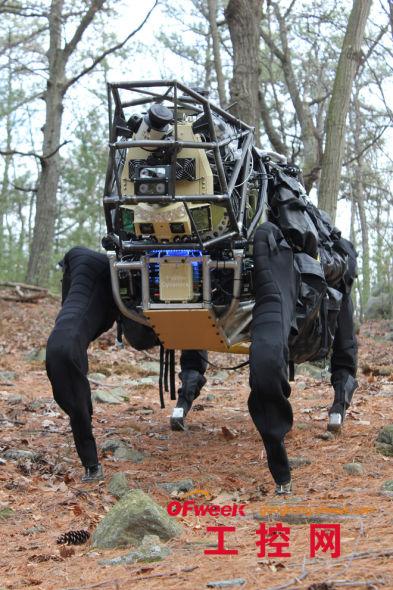 十大神奇动物机器人(高清组图)