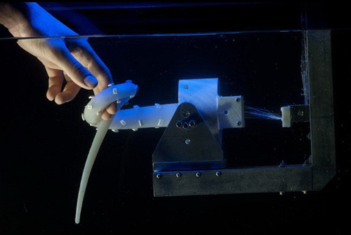 章鱼   未来有一天强大的机械章鱼将使用柔软的触角将你从危险的水域中救起,欧洲一项跨学科项目设计了一个全比例章鱼机器人,具有强大的功能。2012年秋季,意大利工程师设计的这款机械章鱼在伦敦科学博物馆亮相,它具有硅胶触角和人造肌肉。