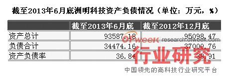 截至2013年6月底洲明科技资产负债情况(单位:万元,%)
