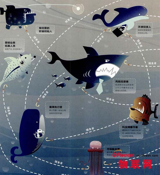 中国为什么没有乔布斯?揭秘物联网生态圈冷血性