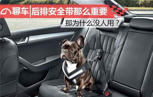 后排安全带那么重要 那为什么没人用?